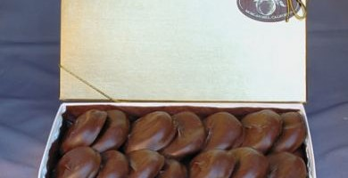 Chocolate Covered Blenheim Apricots – Gold Box (Holiday Season Only)